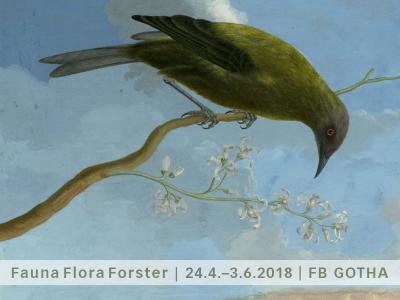 """""""Präszision und Wahrheit"""" – Georg Forster und seine Bilder der Natur"""