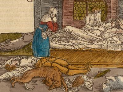 """Bildzensur in Petrarcas deutscher Ausgabe des Werkes """"De remediis utriusque fortunae"""""""